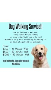 affordable Dog walking Coventry Hills