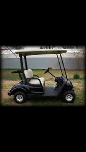 WTS 2014 Yamaha golf buggy comes with charger in great condition Mosman Park Charters Towers Area Preview
