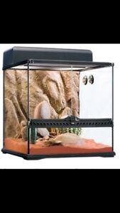 FOR SALE 1 Desert Terrarium kit