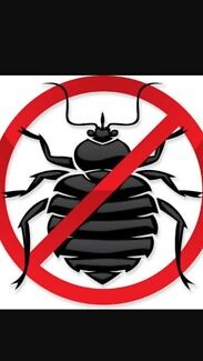 Pest Control All Work Guaranteed From $80