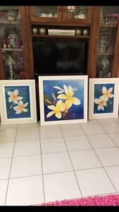 Frangipani photo frames Bligh Park Hawkesbury Area Preview