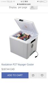 Hot/cold cooler for your automobile