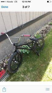 We the people Envy BMX bike.