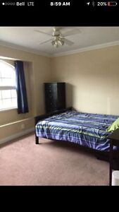 Bright furnished room for rent in Mission