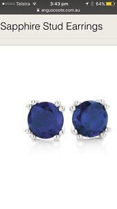 Lost Sapphire earring Narrabeen Lagoon track Lane Cove North Lane Cove Area Preview