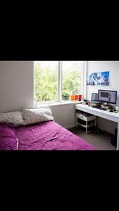 Room in Hawthorn (Near Swinburne Uni) Available from Mid-March Hawthorn Boroondara Area Preview