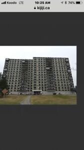 Looking to purchase at Brentwood Towers 1Bedroom Condo