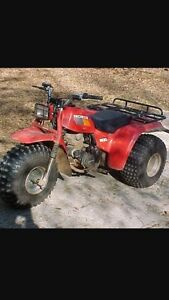 Cheap three wheeler or ATV