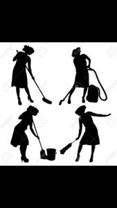 Experienced Cleaning Lady Hamilton and Surrounding Area