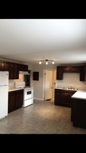 Newly renovated 1 bedroom unit available immediately!  $625