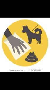 Willing to clean up your doggie poop!!!!!