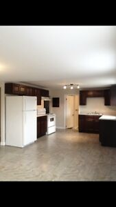 NORTH -1 bedroom completely renovated units! $625