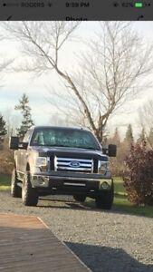 2009 Ford F-150 low km