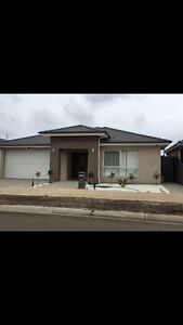 House and  land Mernda Whittlesea Area Preview