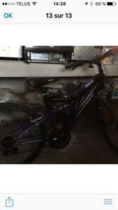 Deux vélos à vendre neuf de marque Dyno