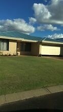 Pet friendly house for rent! Geographe Busselton Area Preview