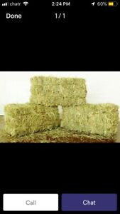 Looking for hay around Winchester/ Kemptville
