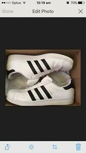 Men's Shell Toes Adidas Superstars US size 13 worn once white Rokewood Golden Plains Preview