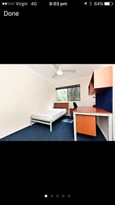 Room for rent (ASAP) Ashmore Gold Coast City Preview