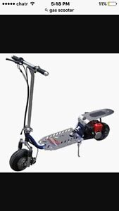Looking to buy a gas scooter