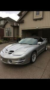 Trans am ws6 ram air