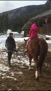 Wanted horse friendly acreage