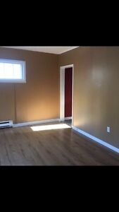 Female friendly Bed-Sitting Rooms! (AES friendly) St. John's Newfoundland image 3