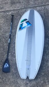 Stand Up Surfboard in great conditions !! Bargain Coolangatta Gold Coast South Preview