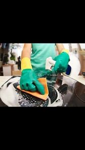 DOMESTIC CLEANING ADELAIDE Northfield Port Adelaide Area Preview