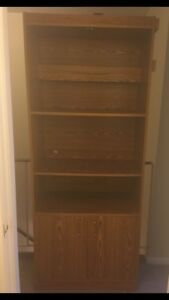 Large Shelf with bottom cupboard and built in Light!  $50