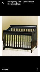 Bily Sydney 4 in 1 crib and dresser
