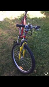 21 Speed Mtn Bike