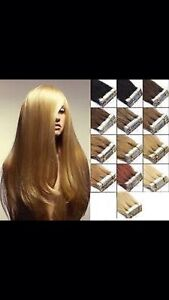 Human Tape HAIR EXTENSIONS 22inch St Marys Penrith Area Preview
