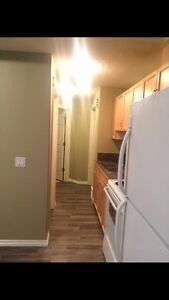 """1 bedroom basement In SUMMERSIDE FOR RENT  """"Newly Renovated"""""""