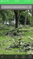 Dave's Lawn Care & Tree Cutting Service