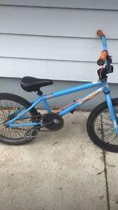 blue bmx bike