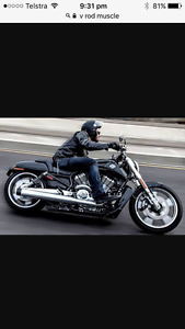 Harley Davidson 2013 V rod Muscle exhaust Ryde Ryde Area Preview