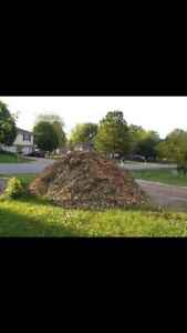 Mulch/ wood chips