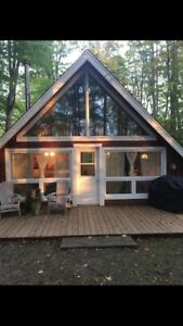 Cottage / cabin in the woods