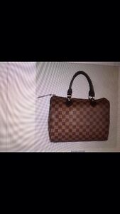 Louis Vuitton Speedy 30 Bossley Park Fairfield Area Preview