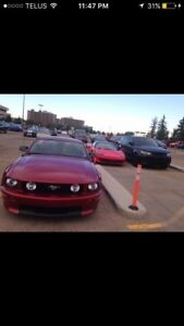 2007 FORD MUSTANG CALIFORNIA SPECIAL