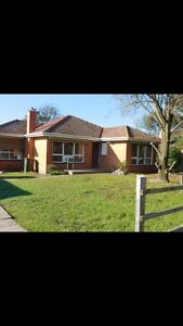 Room for rent near Deakin $150pw Blackburn South Whitehorse Area Preview