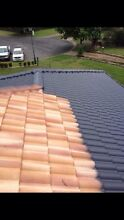 Roof painting & cleaning Mosman Mosman Area Preview