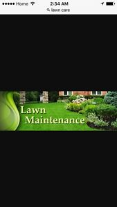 Lawn care for London and St. Thomas areas