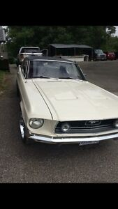 1968 Ford Mustang for sale - REDUCED