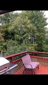 Fully furnished room quiet home Kawartha Lakes Peterborough Area image 7