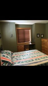 Female roommate - home in Canmore