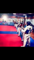taekwondo/kickboxing classes