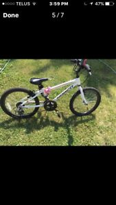 Nordco Voltage kids bike