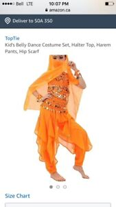WANTED: Harem girl/belly dancer costume